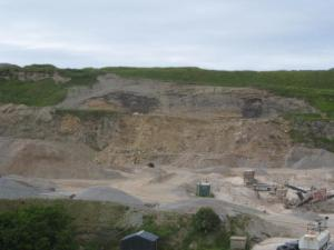 b) The exposure in the overburden above the working quarry face at Boyne Quarry (c) Jon Merritt