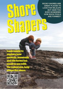 shoreshapers